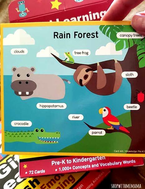 flash cards for kindergarten