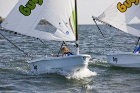 Bug sailboat