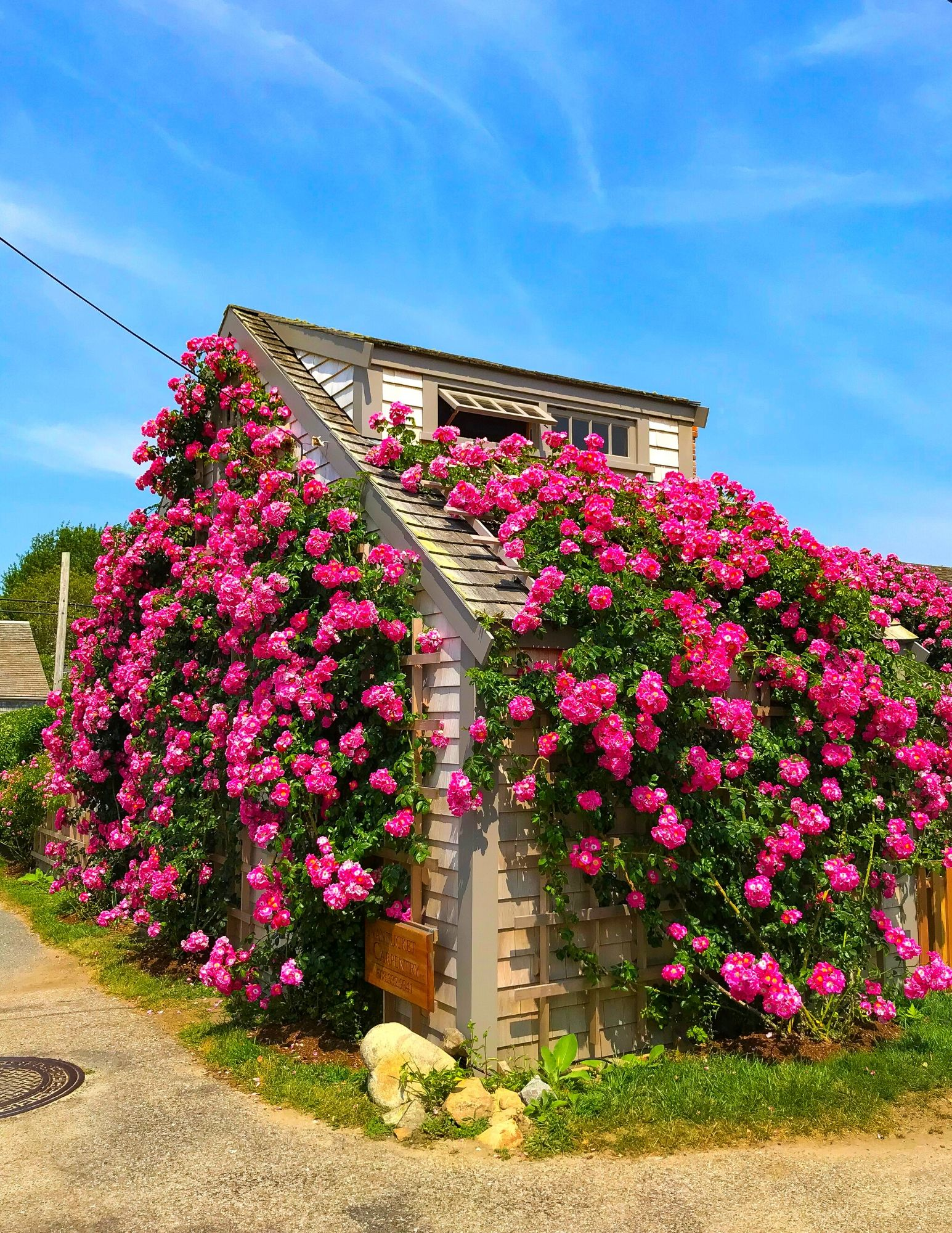 Nantucket Rose Covered Cottages in Sconset-13