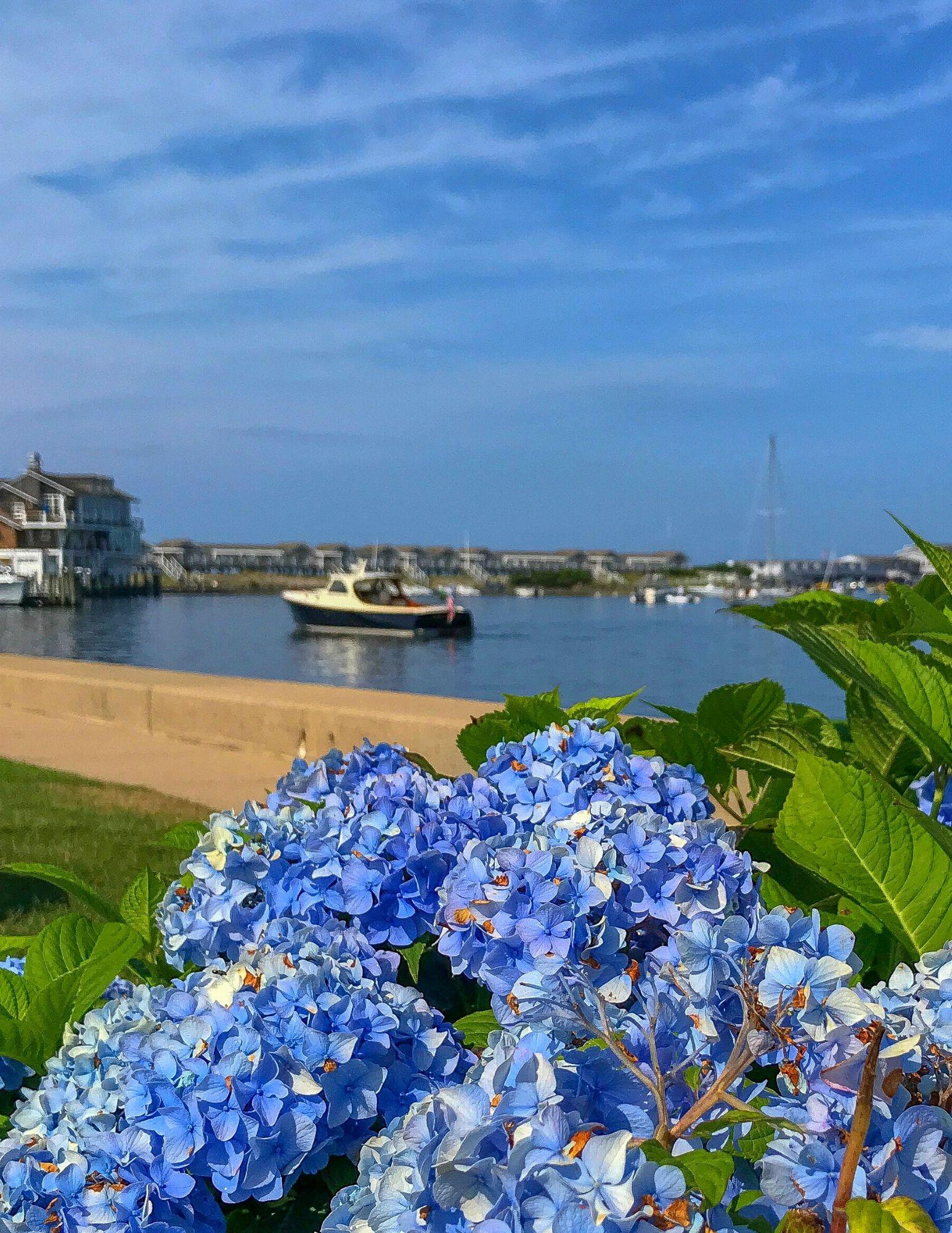 Watch Hill Rhode Island Travel Guide-39