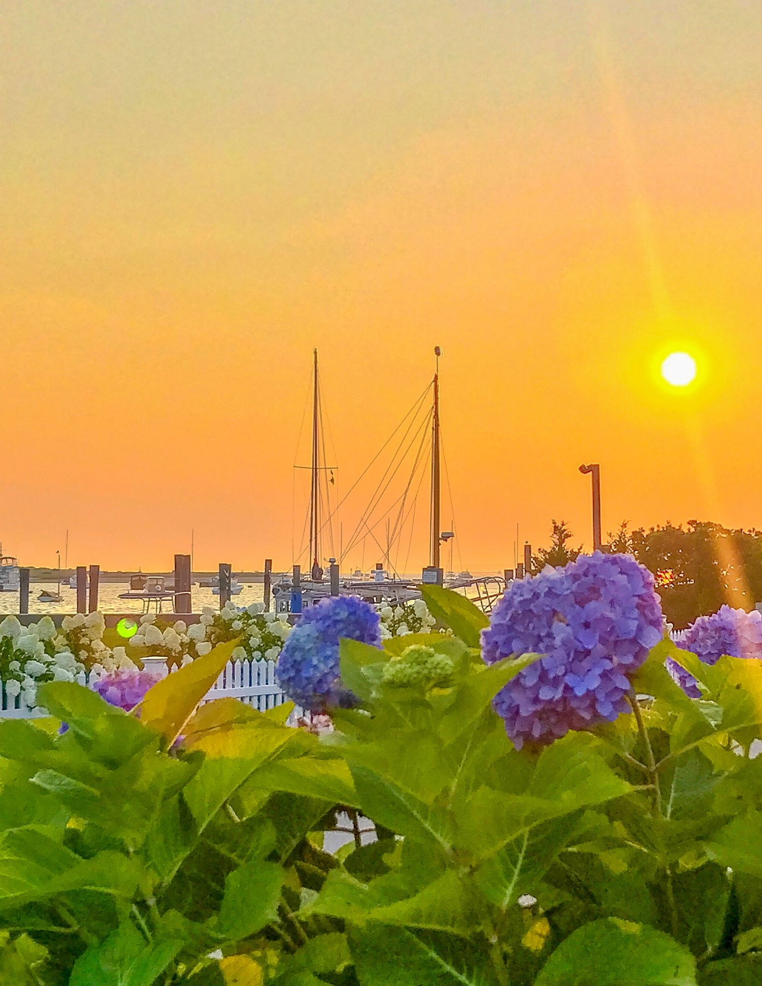 Watch Hill Rhode Island Travel Guide-46