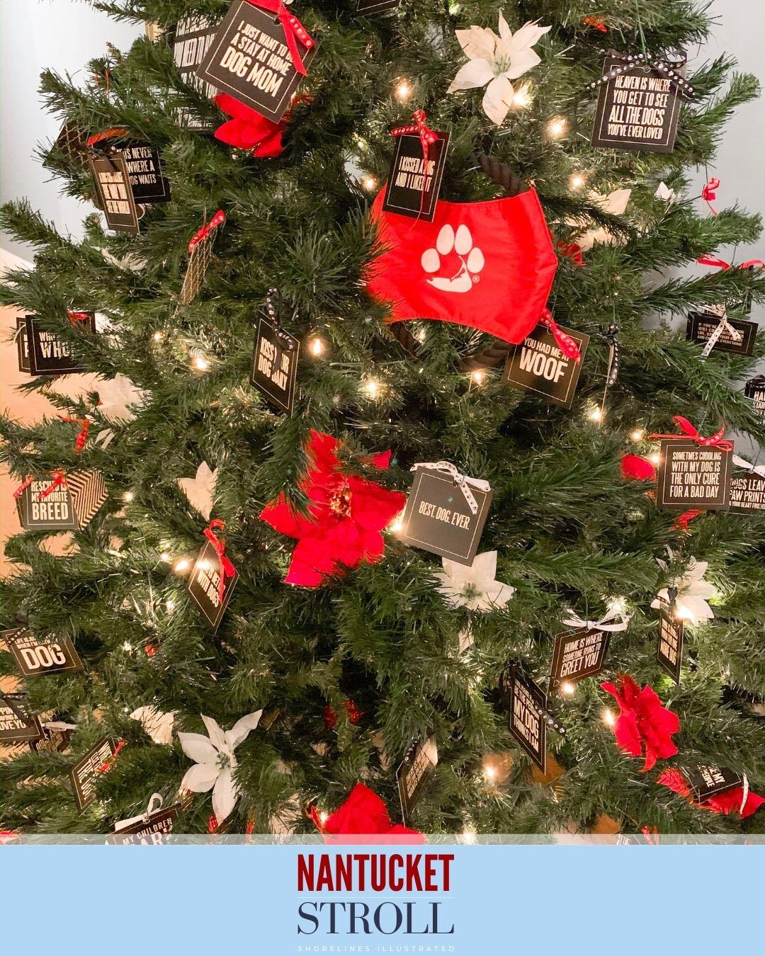 Nantucket Christmas Stroll-38