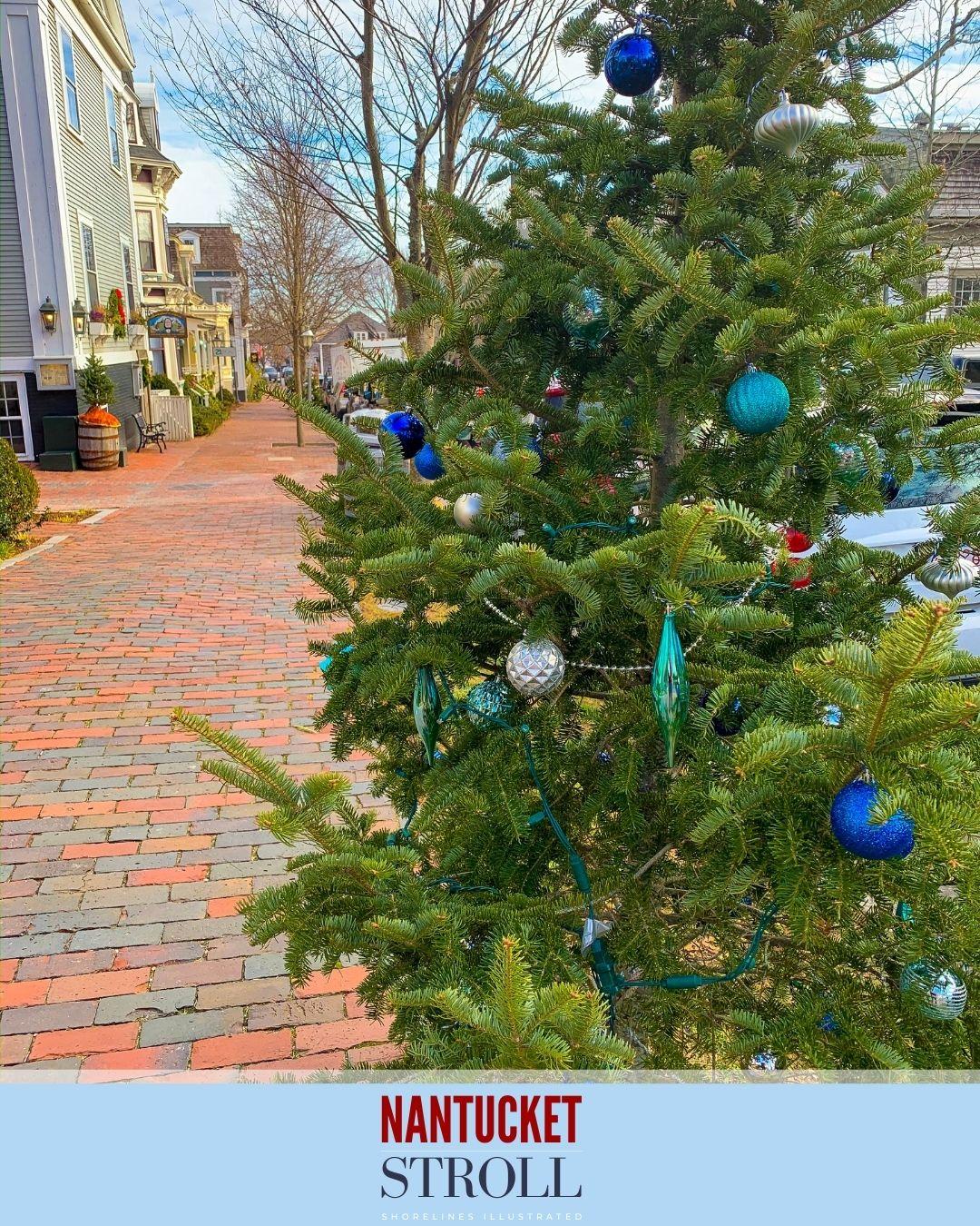 Nantucket Christmas Stroll-53