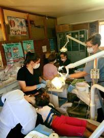 Dental Work 3