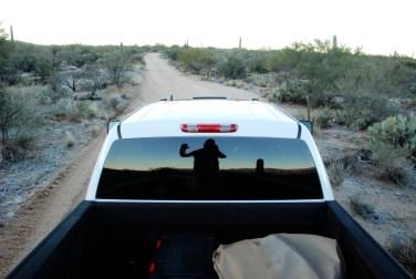 Saguaro NP (3)