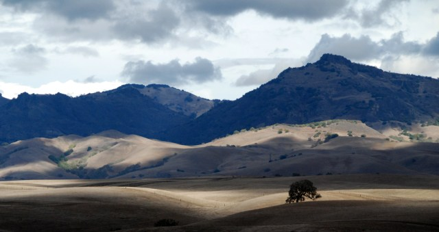 the-hills-of-hollister-ca-are-a-great-place-for-an-rv-adventure