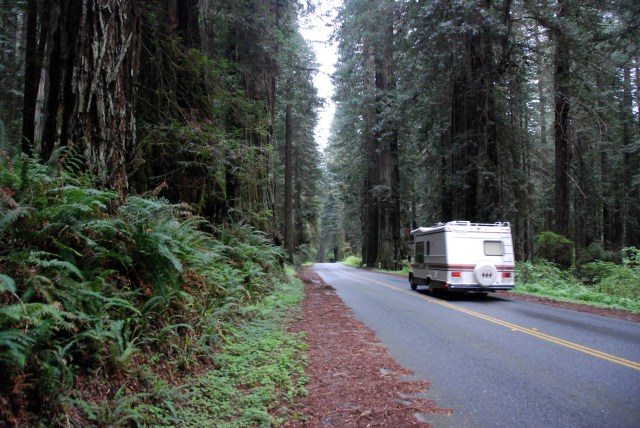 Redwood Highway (23)