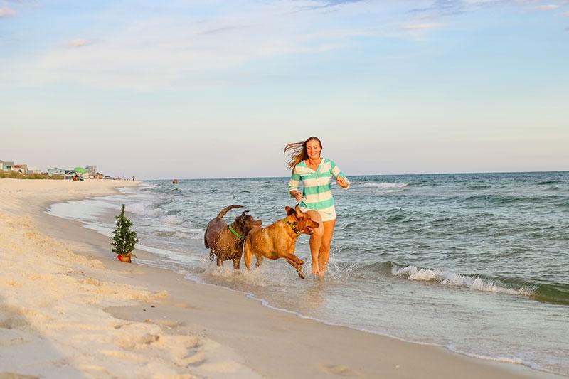 Fort Morgan Photographer Gulf Shores Beach Portraits Dog beach Gulf Shores Alabama Pictures
