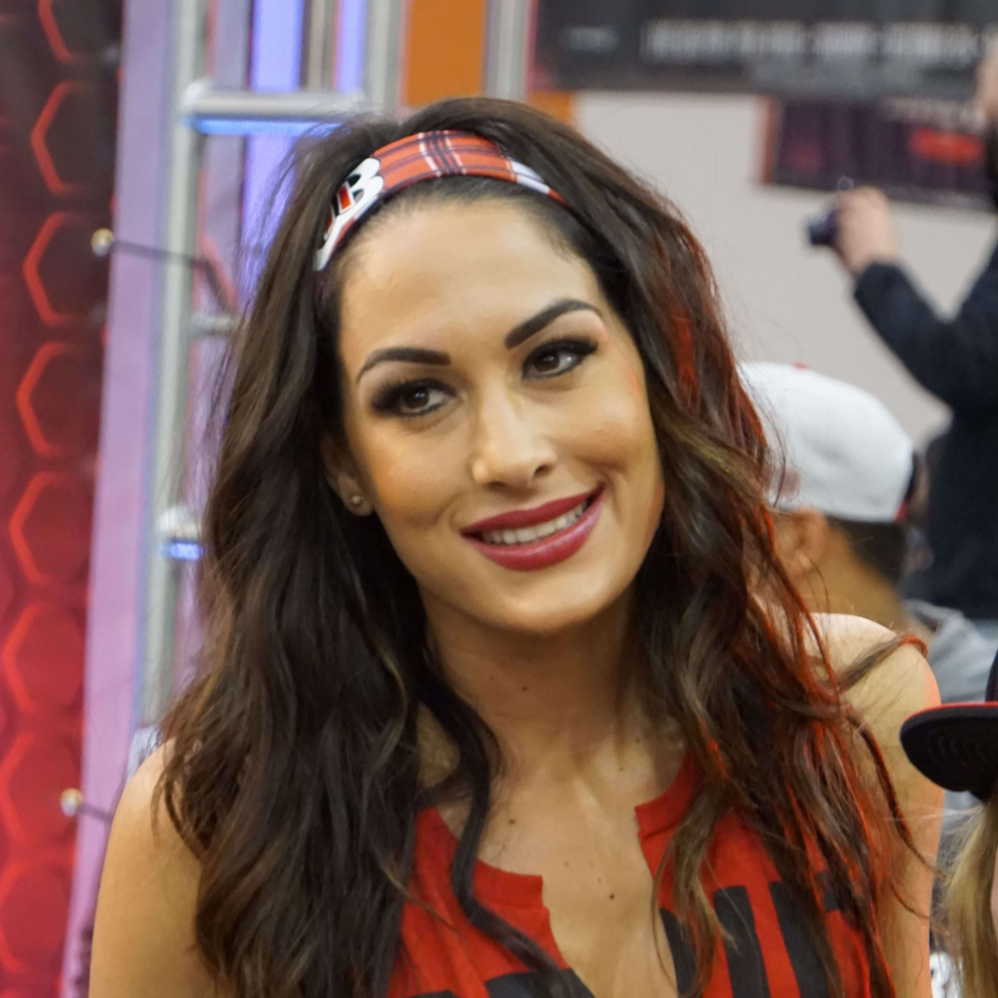 Brie Bella naked (81 gallery), images Feet, YouTube, cleavage 2019