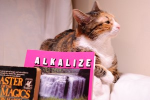 Image of a cat looking scornfully away from the Alkalize or Die book