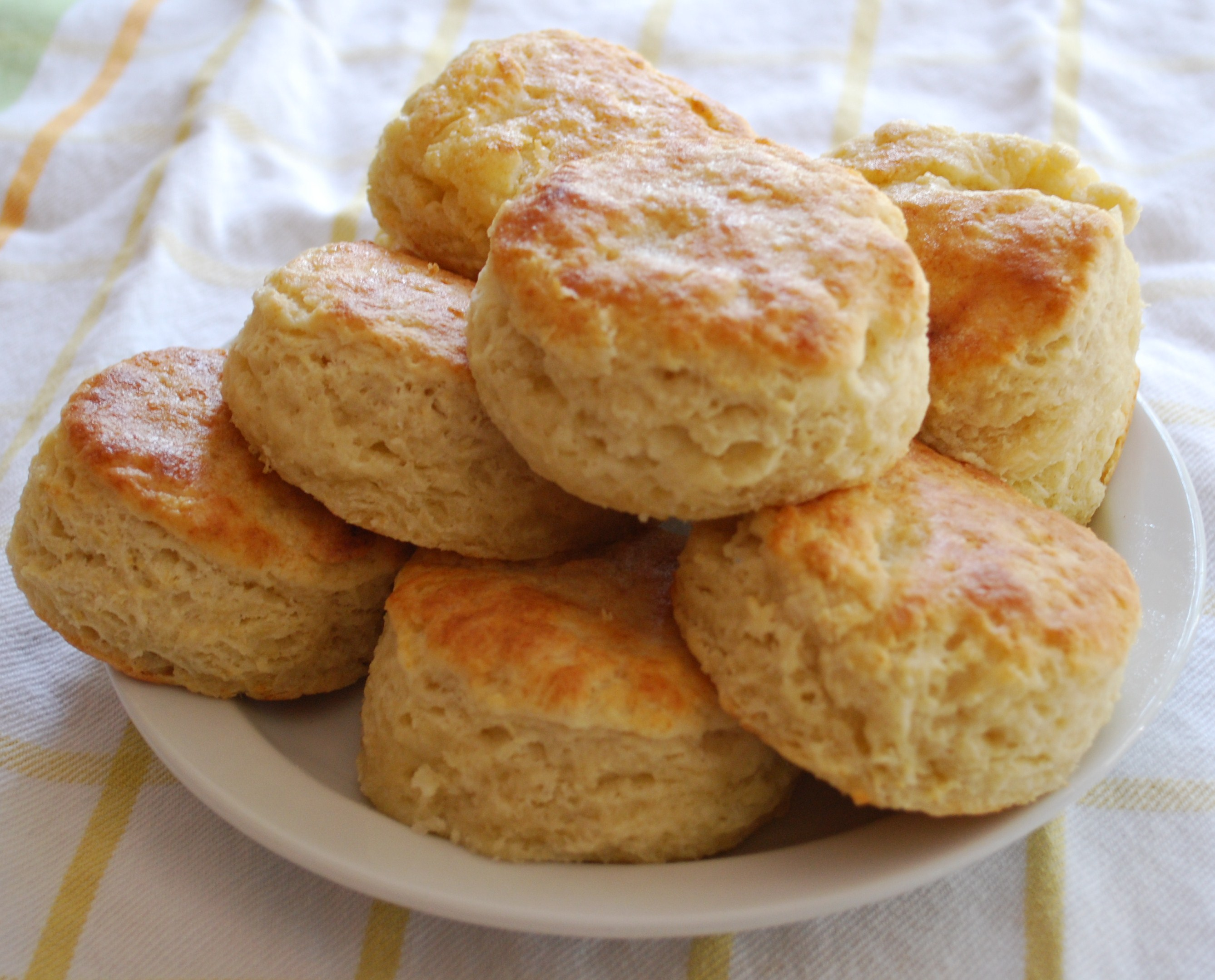 Biscuit finale