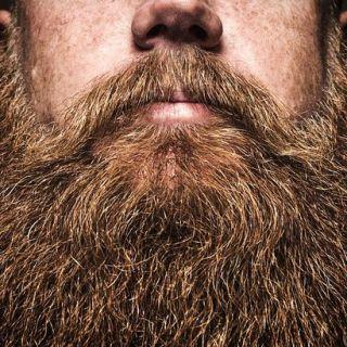 The Blooming Big Beard-Off