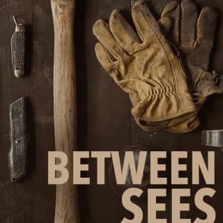 Between Sees