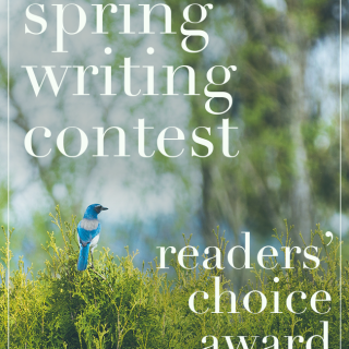 Vote for Your Favorite Story in the Spring Writing Contest
