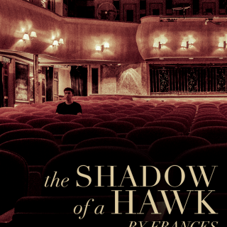 The Shadow of a Hawk