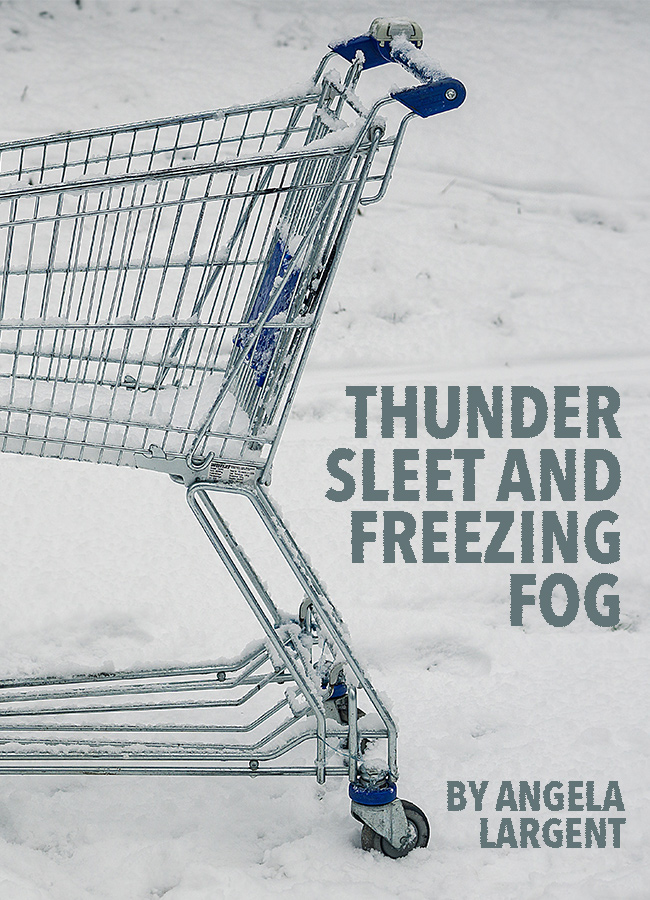 Thunder Sleet and Freezing Fog