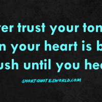 Never trust your tongue when your heart is bitter