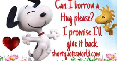 Can i borrow Hug