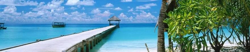 New Caledonia / ニューカレドニア のベストシーズン