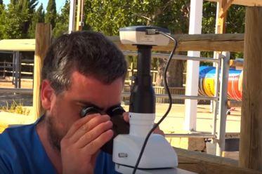 Análisis coprológico, con Andreu Oliver