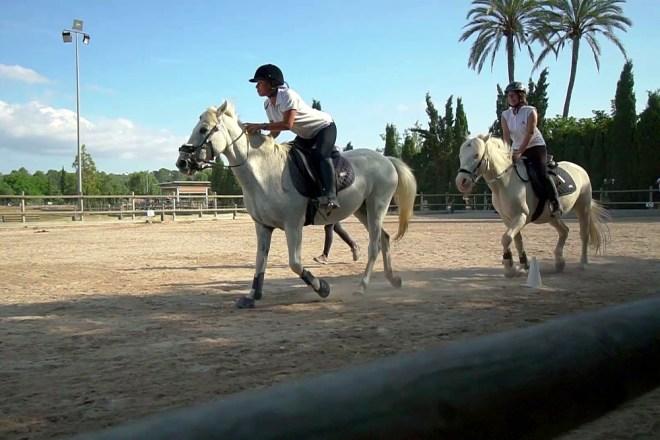 Terapias asistidas con caballos: equitación adaptada