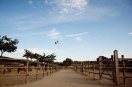 instalaciones S'Hort Vell (05)