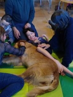 Terapias asistidas con perros: intervenciones con perros en el ámbito de la diversidad funcional
