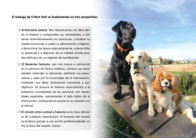 Revista Intervenciones con Perros (03/12)