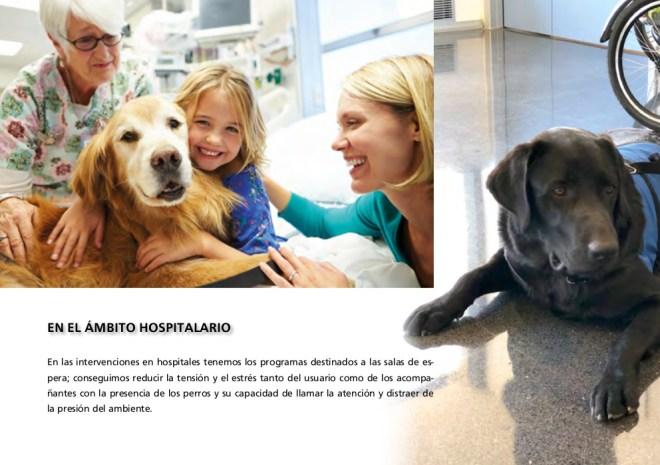 Revista Intervenciones con Perros (08/12)
