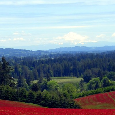 Tualatin Valley Oregon – Prime Weekend Territory