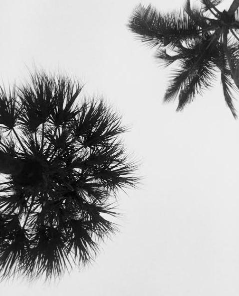bwtree