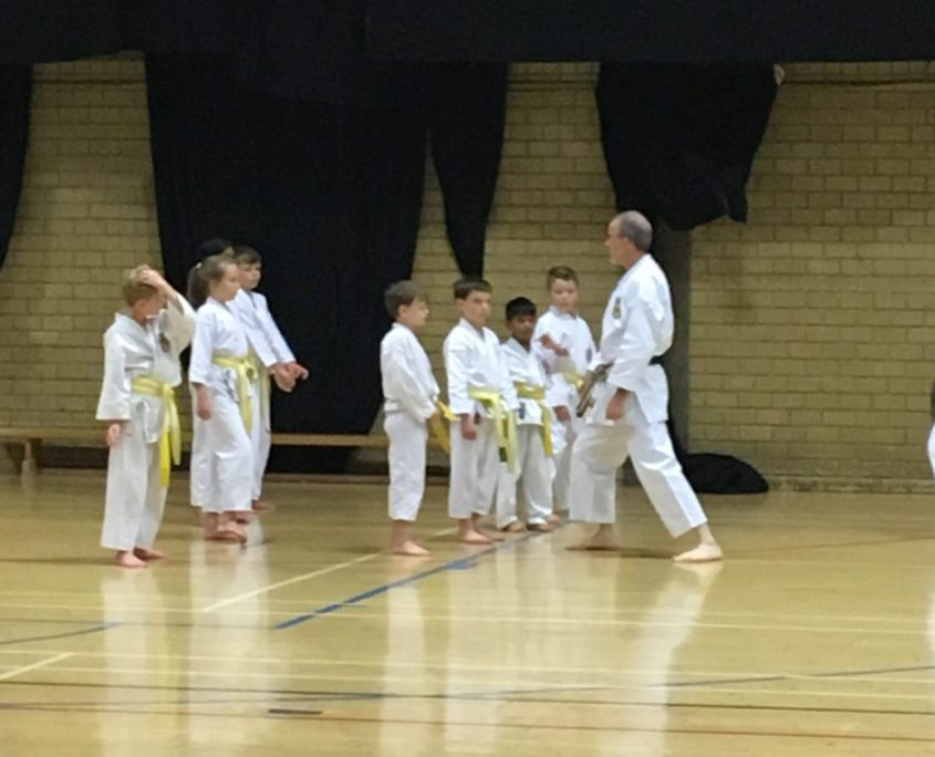 Yellow Belt Grading