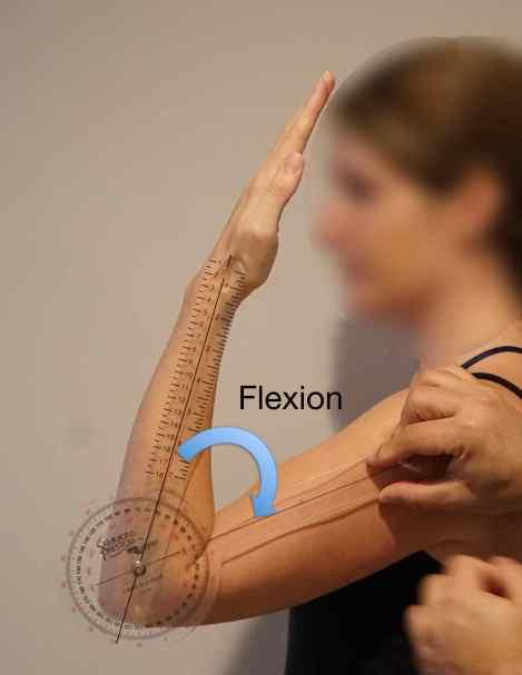 flexion-degrees
