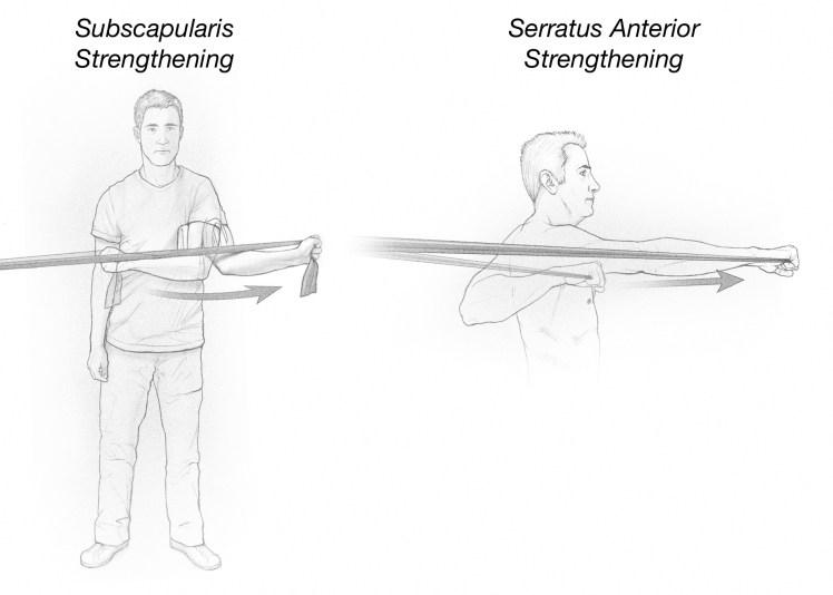 Subscapularis and serratus anterior strengthening