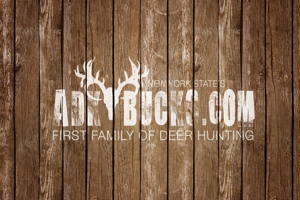 Adirondack Bucks Logo