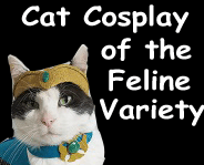cat cosplay of the feline variety link picture