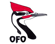 ontario field ornithologists