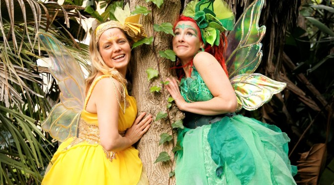 Eco Faeries (interview)