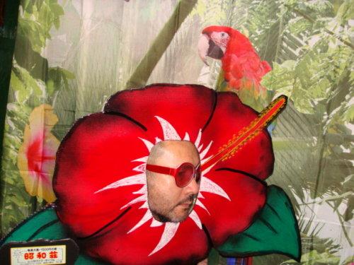 奄美大島のゲストハウス「昭和荘」の顔ハメ看板