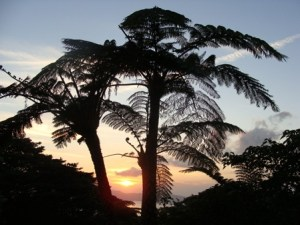 奄美大島・油井岳展望台からの夕日