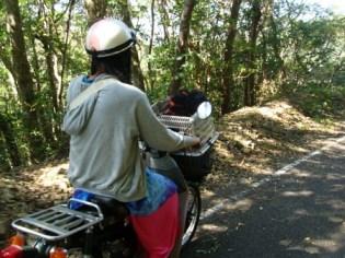 昭和荘レンタバイクでツーリング