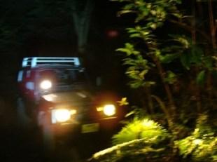 奄美・昭和荘の車でナイトツアー中