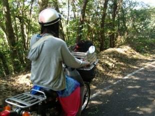 昭和荘レンタルバイクでかけろま旅