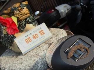 昭和荘入口の充電ライトに止まるヤモリ