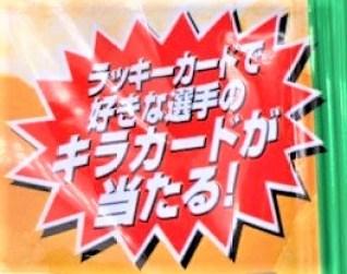 カルビー 2020プロ野球チップス 第2弾 うすしお味 小袋 懐かしいお菓子 japanese-nostalgia-snacks-calbee-2020-professional-baseball-potato-chips-free-toy-card-2020