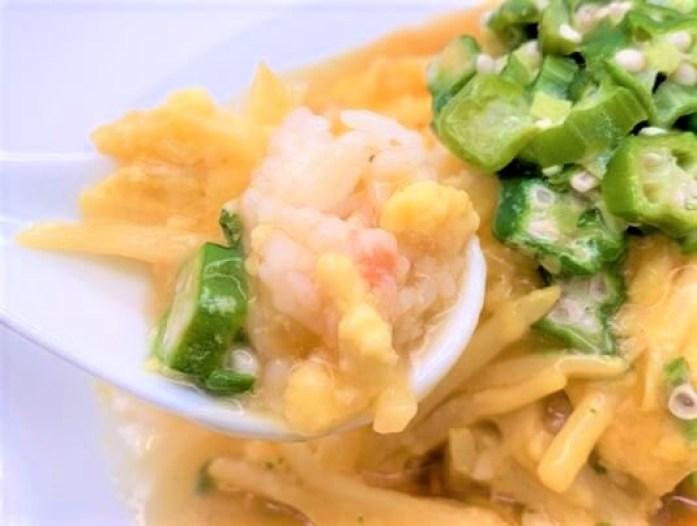ヒガシマル ちょっとどんぶり 天津飯 味つけの素 中華風タイプ 箱 2021 japanese-sauce-mix-higashimaru-chotto-donburi-tenshin-han-omelet-on-rice-homemade-23-2021