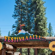 High Sierra Music Festival #32