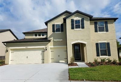 4522 Highfalls Place Valrico FL 33594