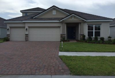 11933 Cinnamon Fern Drive Riverview FL 33579