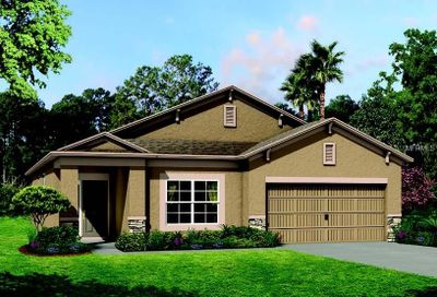 21743 Briske Morning Avenue Land O Lakes FL 34637